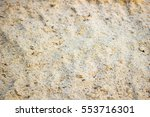 The Texture Of Sawdust  Covere...