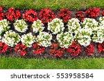 austrian flag as flowers | Shutterstock . vector #553958584