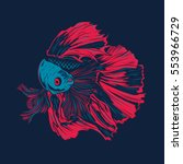 colorful betta fish vector... | Shutterstock .eps vector #553966729