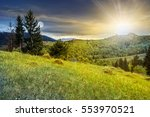 day and night concept with slope of mountain range with spruce forest on the meadow - stock photo