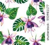 wildflower parrot bird in a... | Shutterstock . vector #553981177
