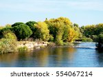 Trees And Shrubs On The Lake