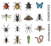Insects Set Icons In Cartoon...