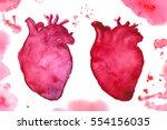 romantic watercolor human... | Shutterstock .eps vector #554156035