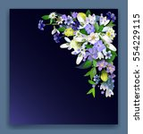 spring primroses card with... | Shutterstock .eps vector #554229115