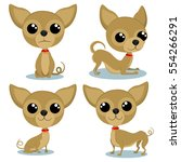 chihuahua cartoon character in... | Shutterstock .eps vector #554266291