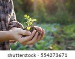 soil cultivated dirt  earth ... | Shutterstock . vector #554273671