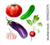 set of vector watercolor... | Shutterstock .eps vector #554421574