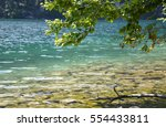 Waterside with crystal clear water at Koenigssee on a sunny summer day - stock photo