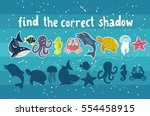 find the correct shadow   kids... | Shutterstock .eps vector #554458915