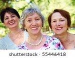 portrait of three aged women...   Shutterstock . vector #55446418