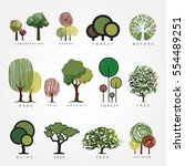 set of vector tree illustration.... | Shutterstock .eps vector #554489251