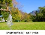 Water Tap In Park. Shot In...