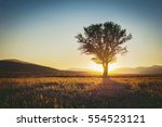 Silhouette Of  Lonely Tree And...