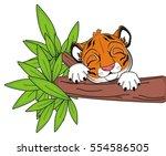 Sleeping Snout Of Orange Tiger...