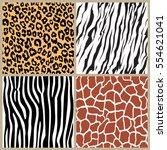 set safari jungle animal fur... | Shutterstock .eps vector #554621041