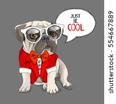 puppy pug in a red tuxedo... | Shutterstock .eps vector #554667889