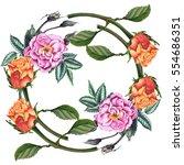 watercolor botanical... | Shutterstock . vector #554686351