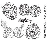 ripe raspberry  realistic... | Shutterstock .eps vector #554715691
