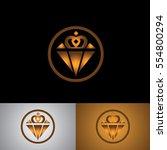 diamond icon logo to gift | Shutterstock .eps vector #554800294