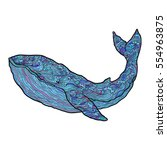 hand drawn vector outline whale ... | Shutterstock .eps vector #554963875