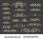 vintage decor elements and... | Shutterstock . vector #555003991