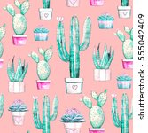 cactus and succulent seamless... | Shutterstock . vector #555042409