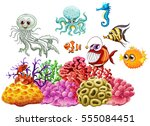 sea animals and coral reef... | Shutterstock .eps vector #555084451