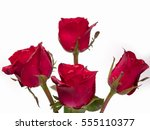 Stock photo roses on valentine s day put on a white background 555110377