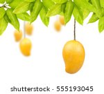 Mango Fruit With Leaf Isolated...