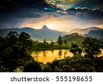 panorama of the tea plantations ... | Shutterstock . vector #555198655