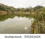 arastradero preserve is a... | Shutterstock . vector #555201424