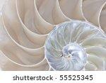 stock photograph of a half... | Shutterstock . vector #55525345