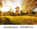 last warm sunny day in park | Shutterstock . vector #555309121