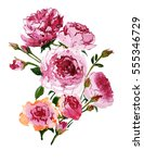 a bouquet of pink peonies... | Shutterstock . vector #555346729