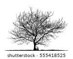 realistic tree silhouette ... | Shutterstock .eps vector #555418525