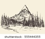 sketch of a mountains with pine ... | Shutterstock .eps vector #555444355