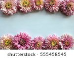 beautiful flowers background... | Shutterstock . vector #555458545