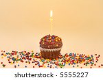 Chocolate frosted cupcake with single candle, and colorful sprinkles. - stock photo