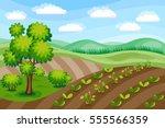 rural landscape. agriculture... | Shutterstock .eps vector #555566359