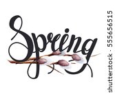 hand drawn spring lettering...   Shutterstock . vector #555656515
