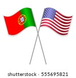 portuguese and american crossed ... | Shutterstock .eps vector #555695821