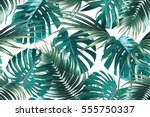 tropical palm leaves  jungle... | Shutterstock .eps vector #555750337