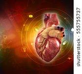 3d anatomy of human heart  | Shutterstock . vector #555755737