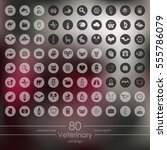 set of veterinary icons | Shutterstock .eps vector #555786079