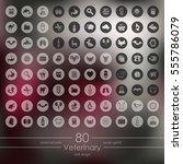 set of veterinary icons | Shutterstock .eps vector #555786079