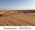 Tire Tracks In Omani Desert
