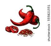 chili pepper hand drawn... | Shutterstock . vector #555821551