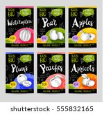 set of colorful labels in... | Shutterstock .eps vector #555832165