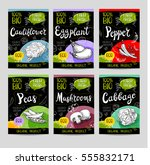 set of colorful labels  sketch... | Shutterstock .eps vector #555832171
